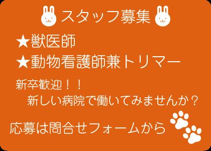 ほほえみ動物病院では獣医師、動物看護師兼トリマーを募集しています。
